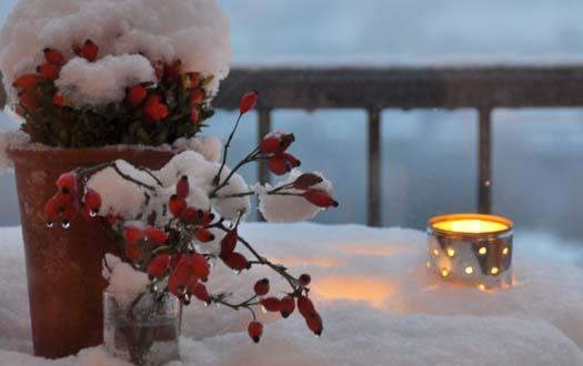 Wintereinbruch_0947.jpg