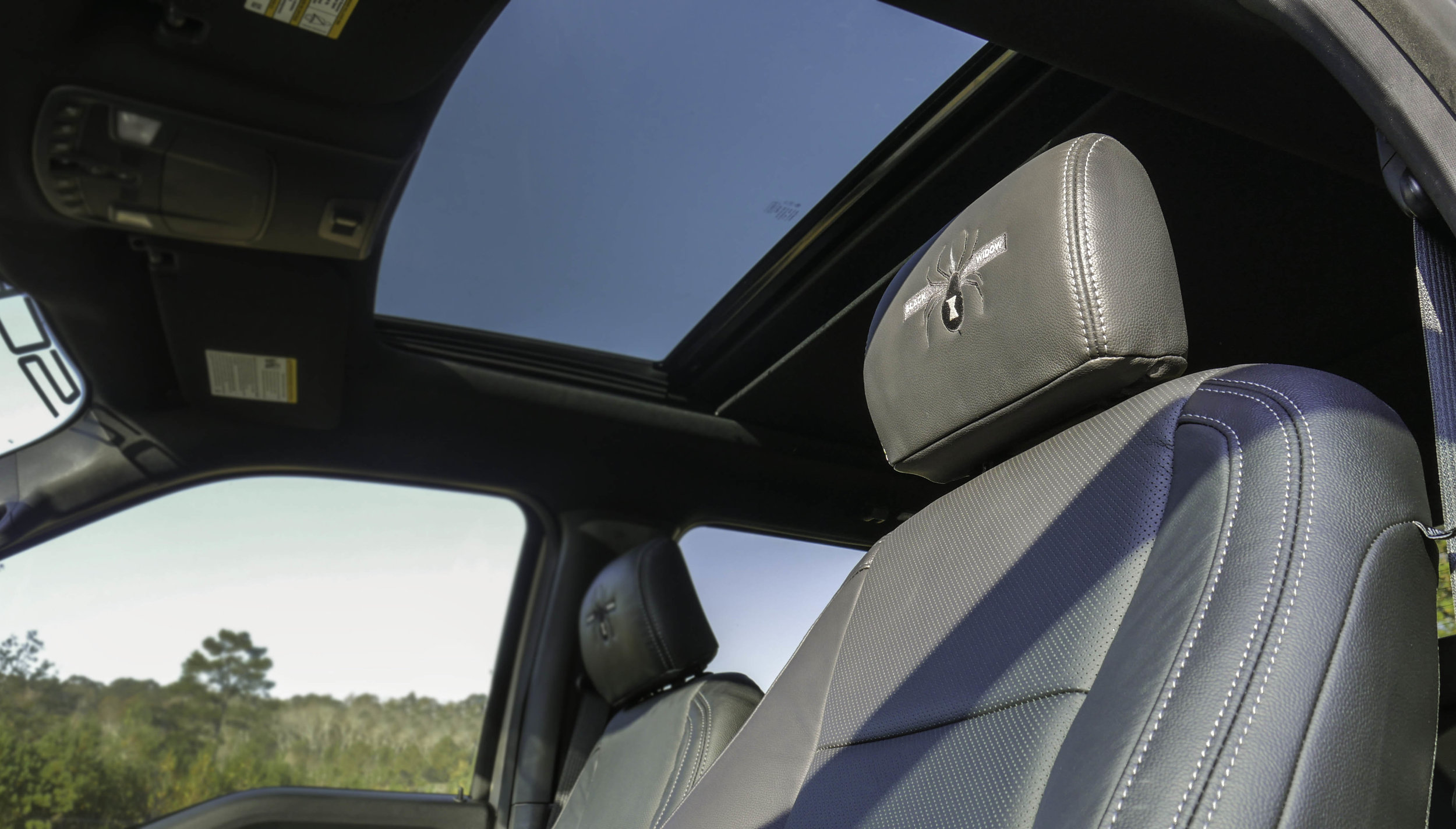 Ford AFBW Headrests.jpg