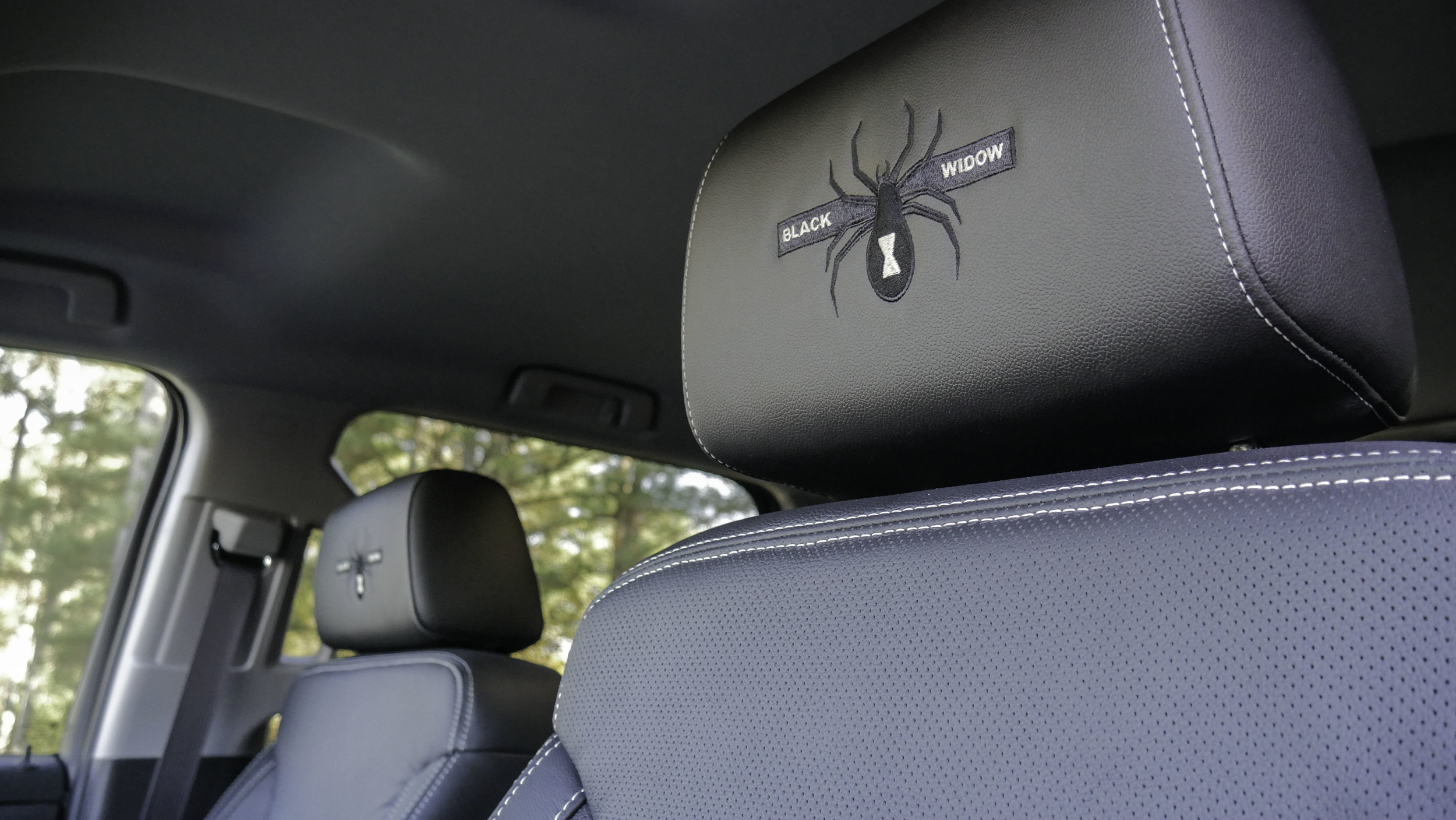 Chevy AFBW Headrest.jpg