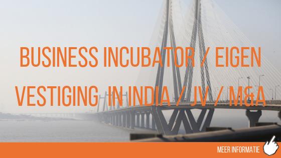 Business Incubator, eigen vestiging in India, joint venture, m&a