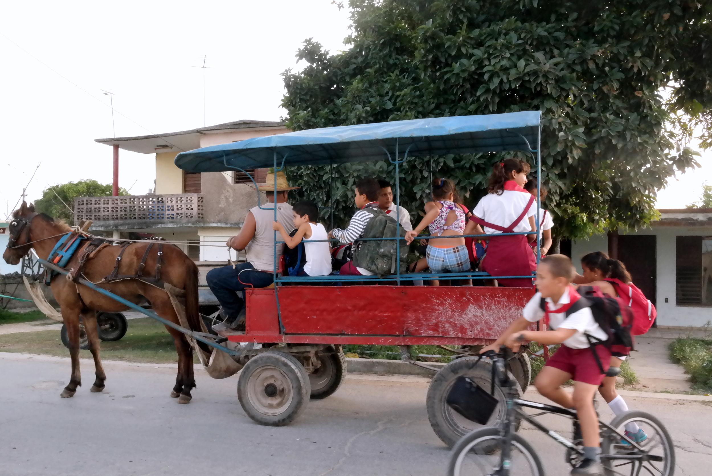 Skolbussen på Kubas landsbygd är givetvis en hästdroska.