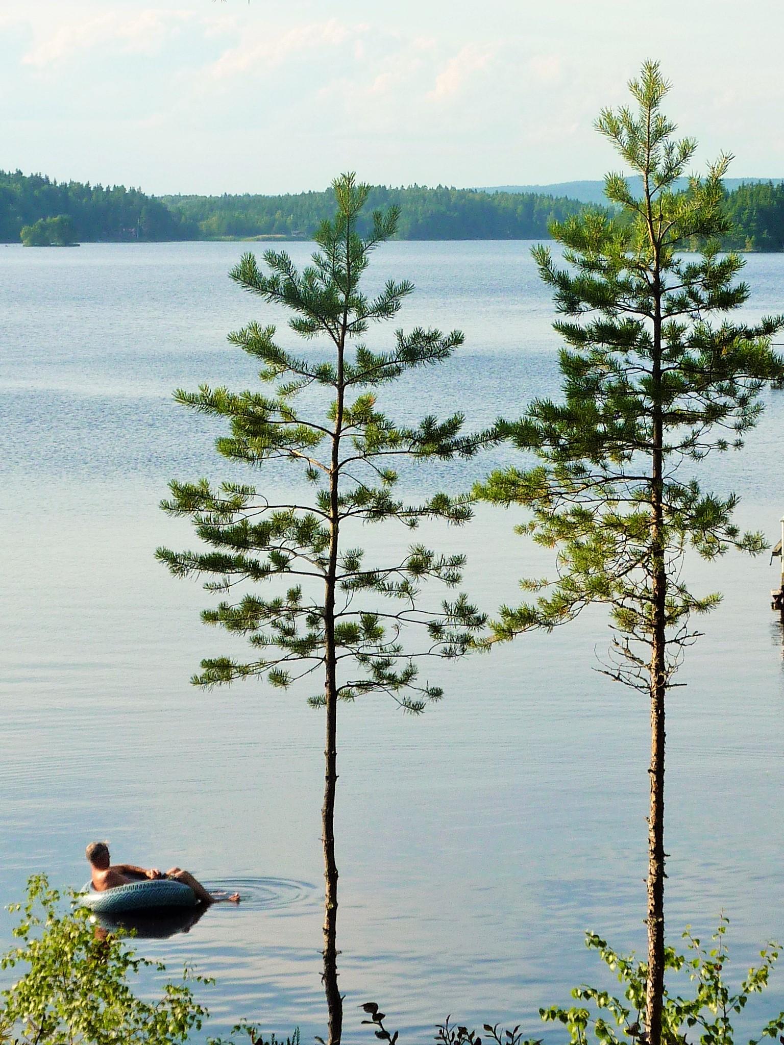 Summer at Lake Runn, Sweden