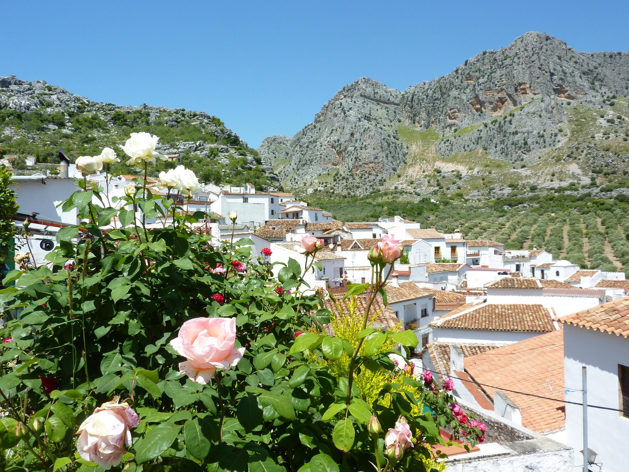 Många söta byar har fångats av min kameralins genom åren. Här Grazalema i södra Spanien.