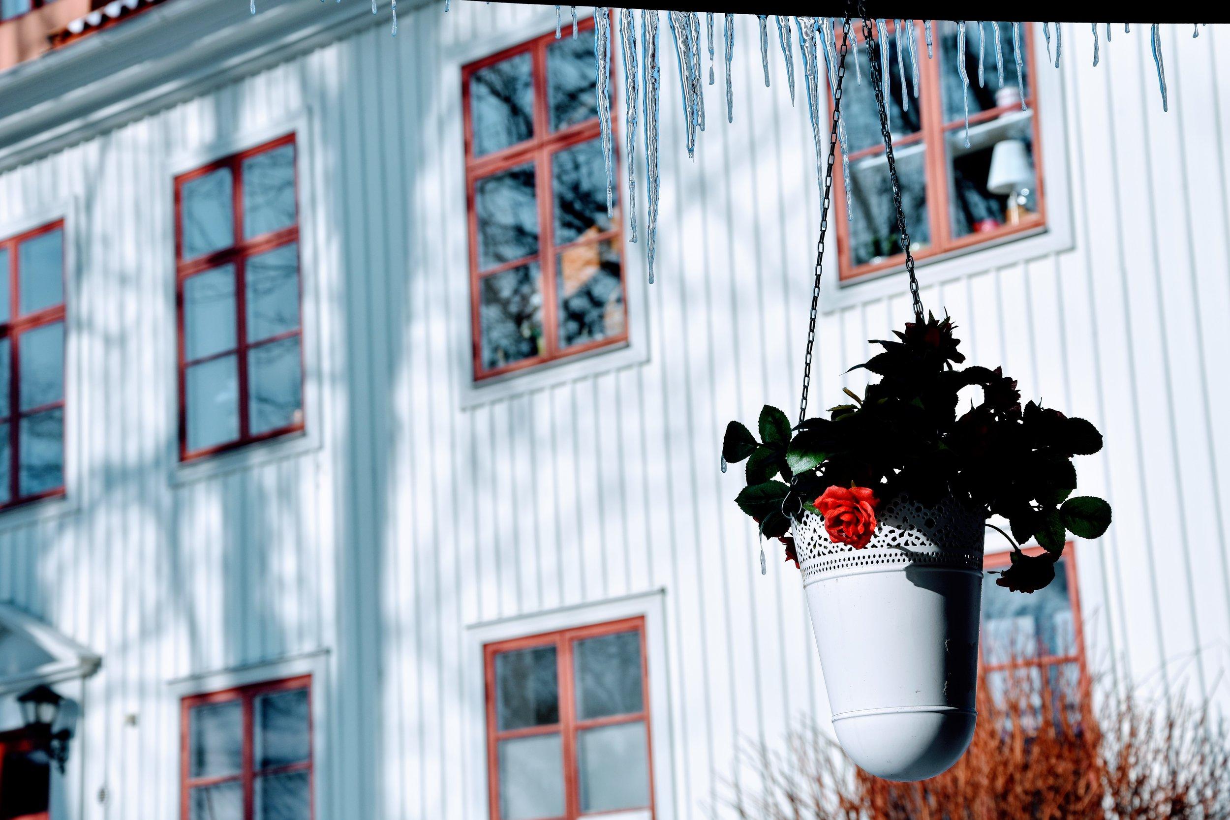 Staycation i Örebro med Sofia Brolin (hildas.se)