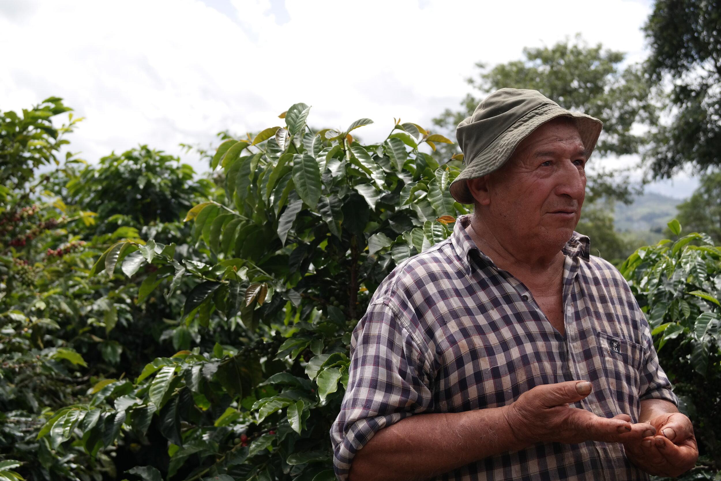 Kaffeplantagens ägare berättar om vägen från böna till kopp