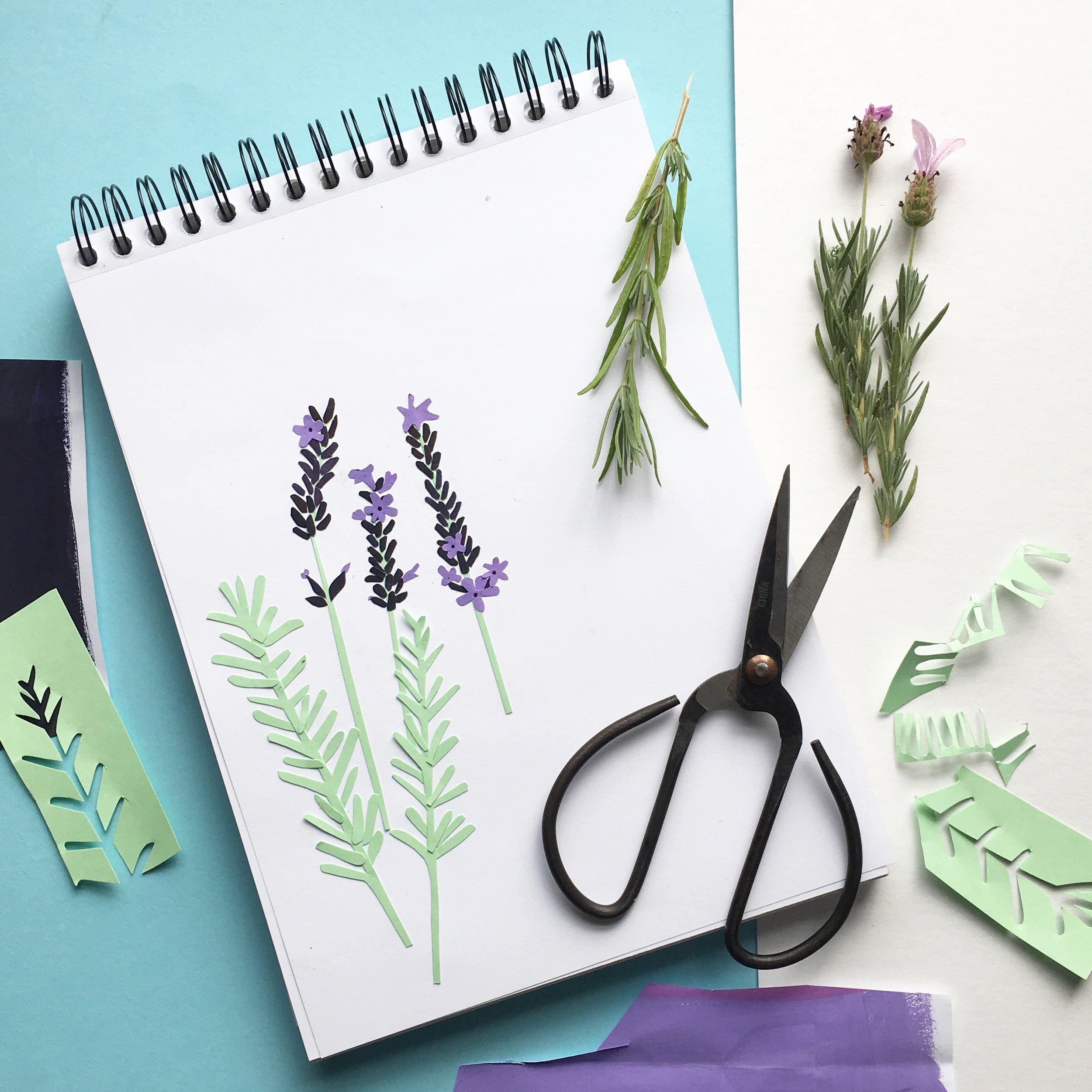 sketchbook lavender.jpg