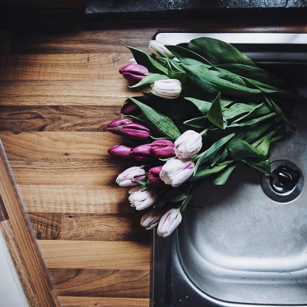 Tulips in the sink.jpg