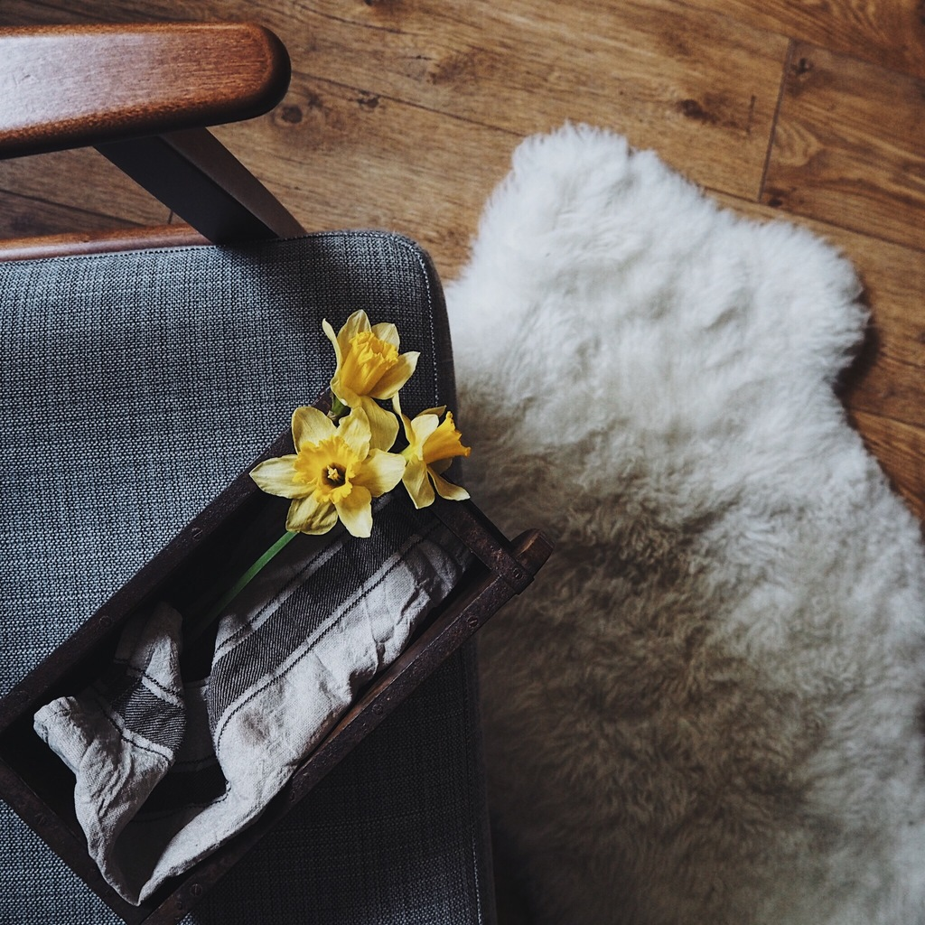 Daffodils on the corner of an armchair.jpg