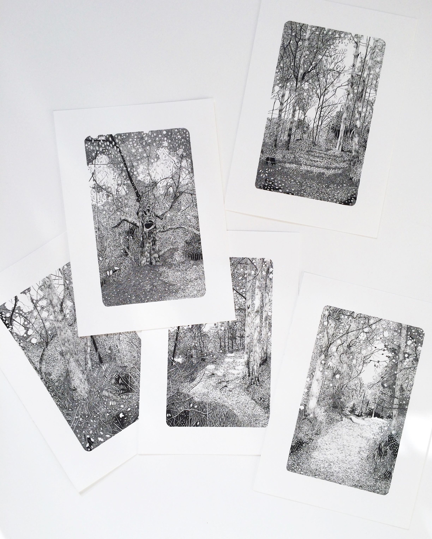 Claire Leach - Woodland Studies Series.jpeg