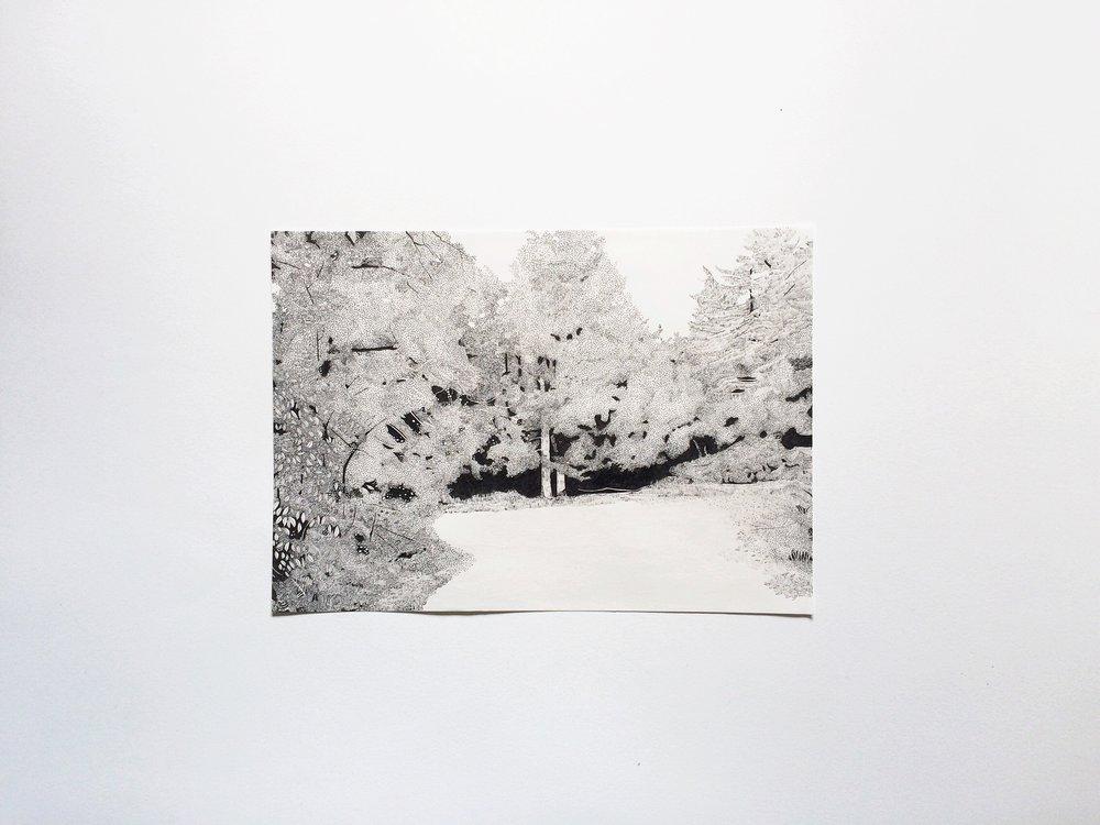 Claire Leach -Pathway III.jpeg