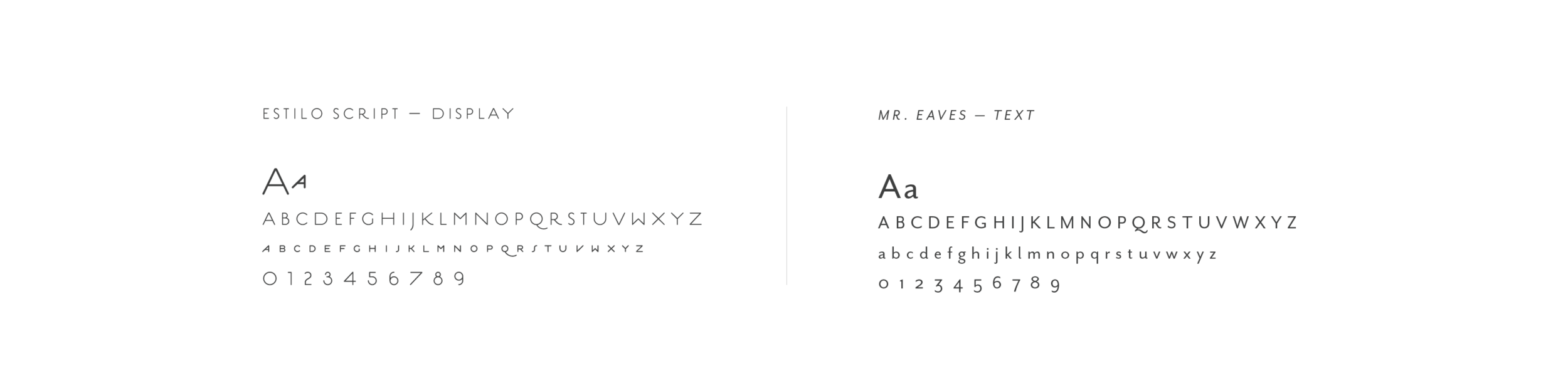seedlings-fonts.png