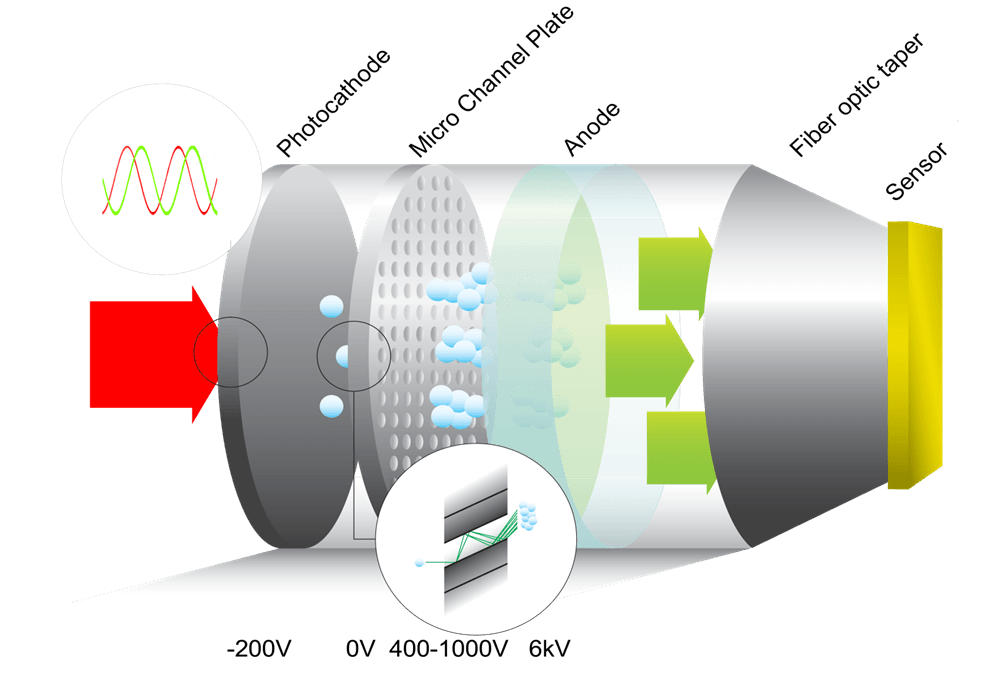 Figure 1.Schematic representation of a proximity-focused image intensifier, showing its photocathode, micro-channel plate and anode, fiber-optically coupled to a sensor.