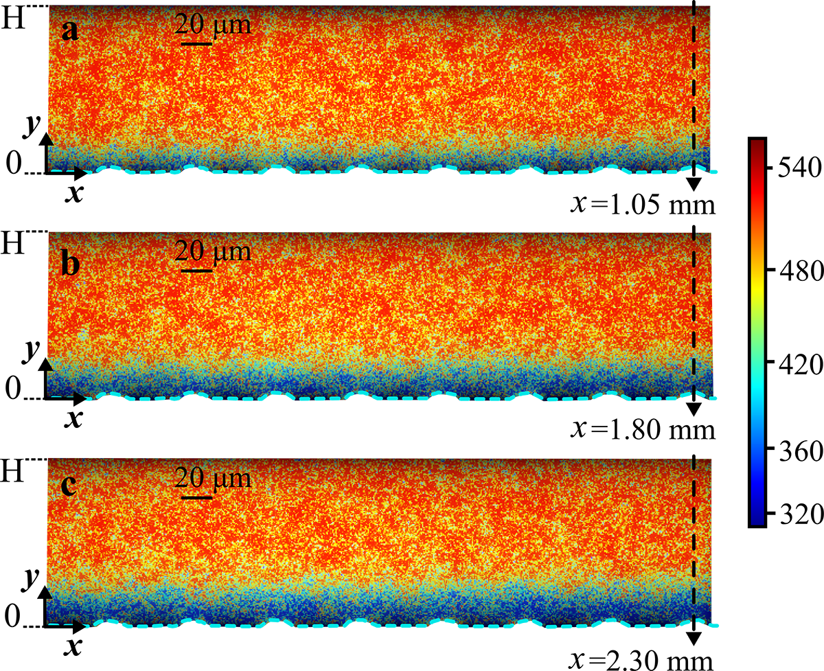 Figure 2. Successive lifetime fields in axial position x. Quantitative visualization of the increasing boundary layer thickness along downstream flow (45 μl/min). The flow direction is from left to right. The color bar refers to the lifetime, which is given in nanoseconds. The dashed arrows indicate the axial positions at which the local oxygen concentration profiles across the microchannel height are obtained.