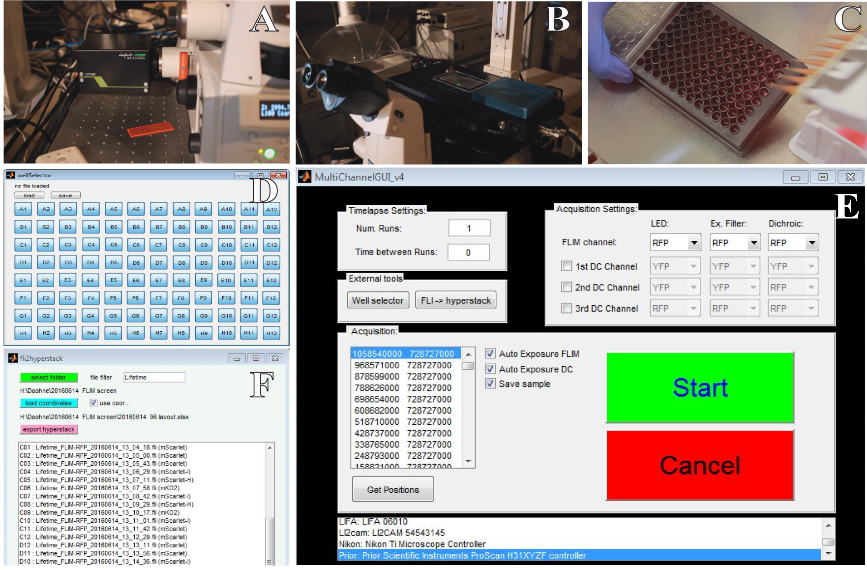 Figure 1 . Automated 96-well lifetime acquisition. The LIFA camera (A) and microscope (B) iterate over a 96 well plate (C). Each well can be selected or deselected by using the well selector (D). The selected coordinates are loaded into the MATLAB GUI and specific excitation and emission filters can be selected together with auto-exposure and output file settings (E). Finally, lifetime files (fli) are exported to a large TIF hyperstack (F) for further processing with ImageJ.