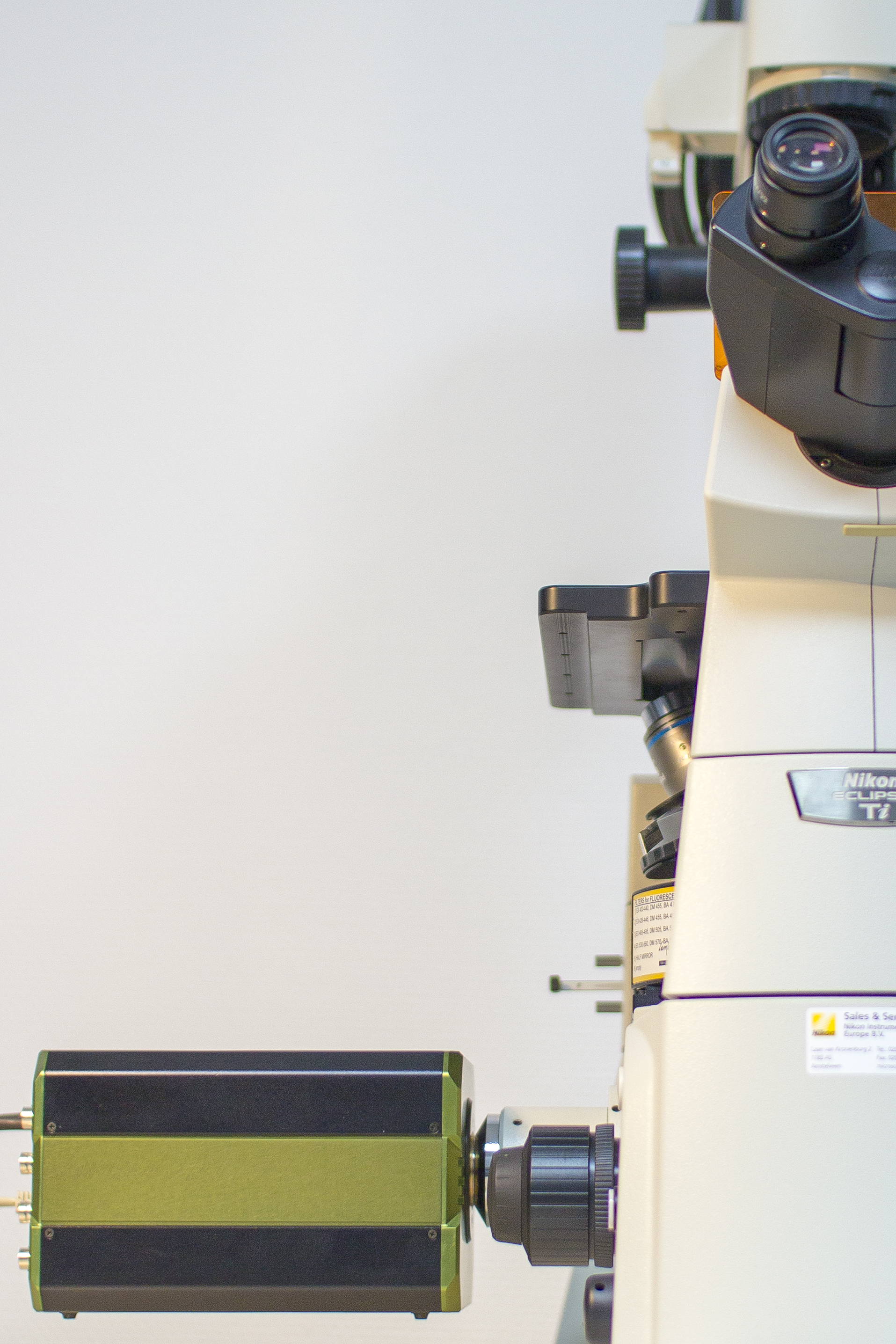The LIFA-TD offers a turn-key solution for fluorescence lifetime imaging microscopy based on a gated intensified camera (ICCD/ICMOS) and is compatible with every widefield fluorescence microscope