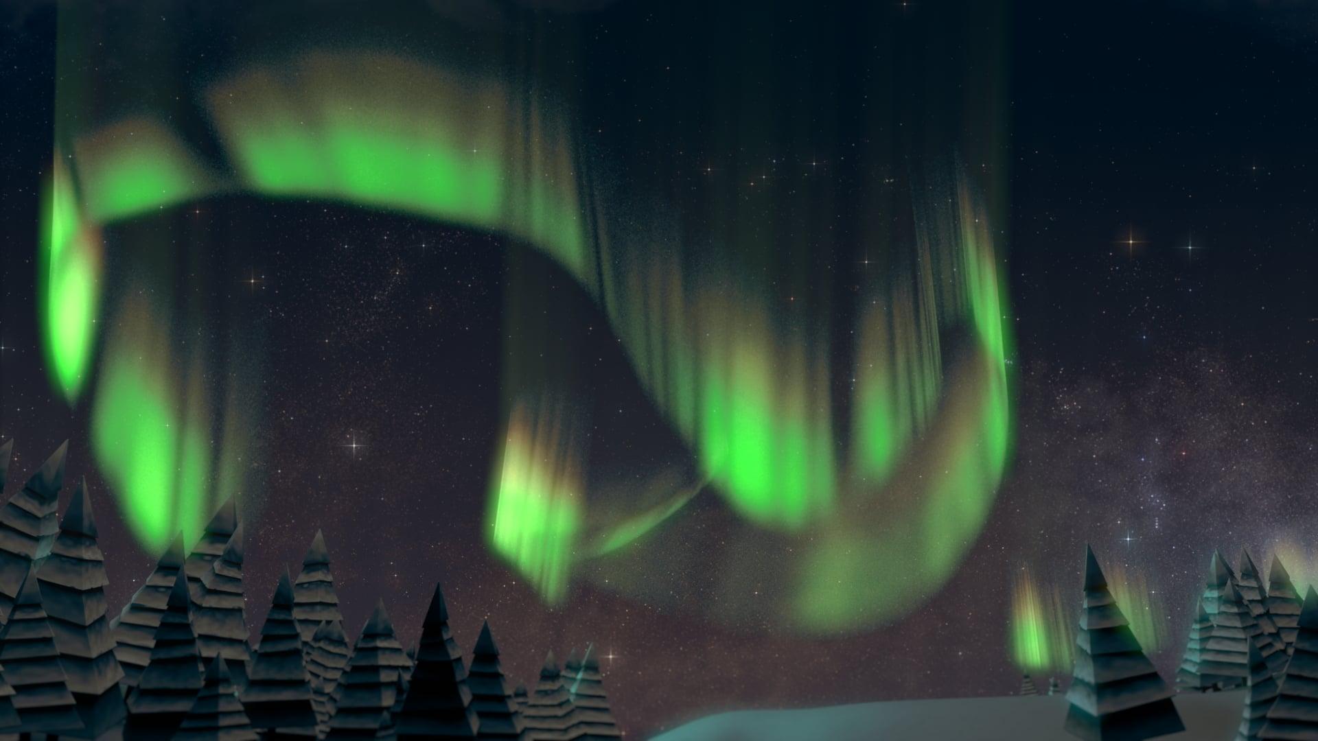 Zoo Lights Northern Lights Concept