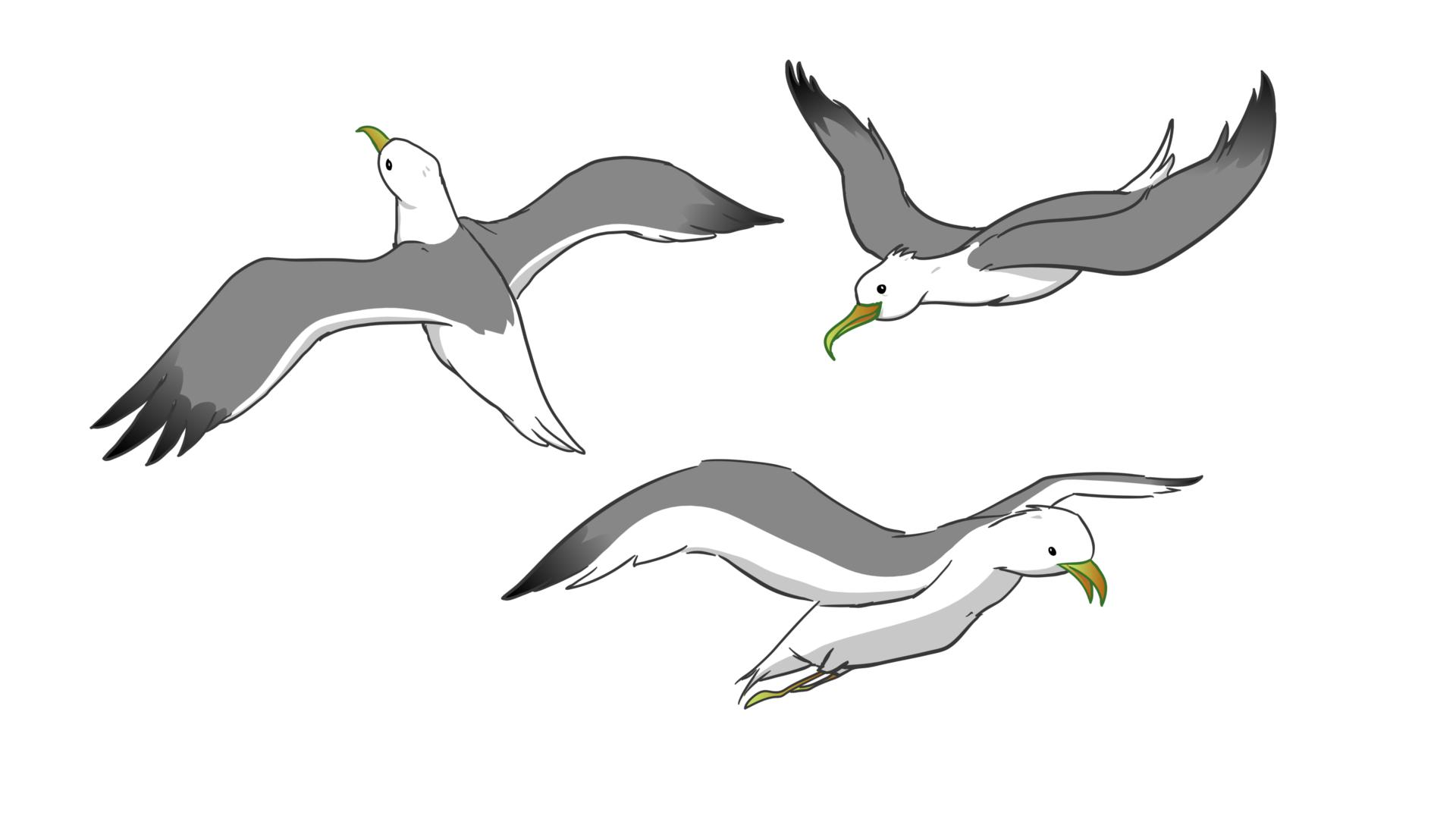 Holiday Seagulls