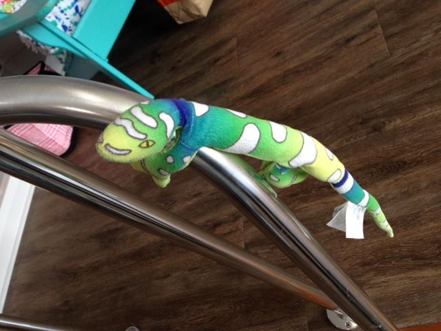 Meet Iguanee