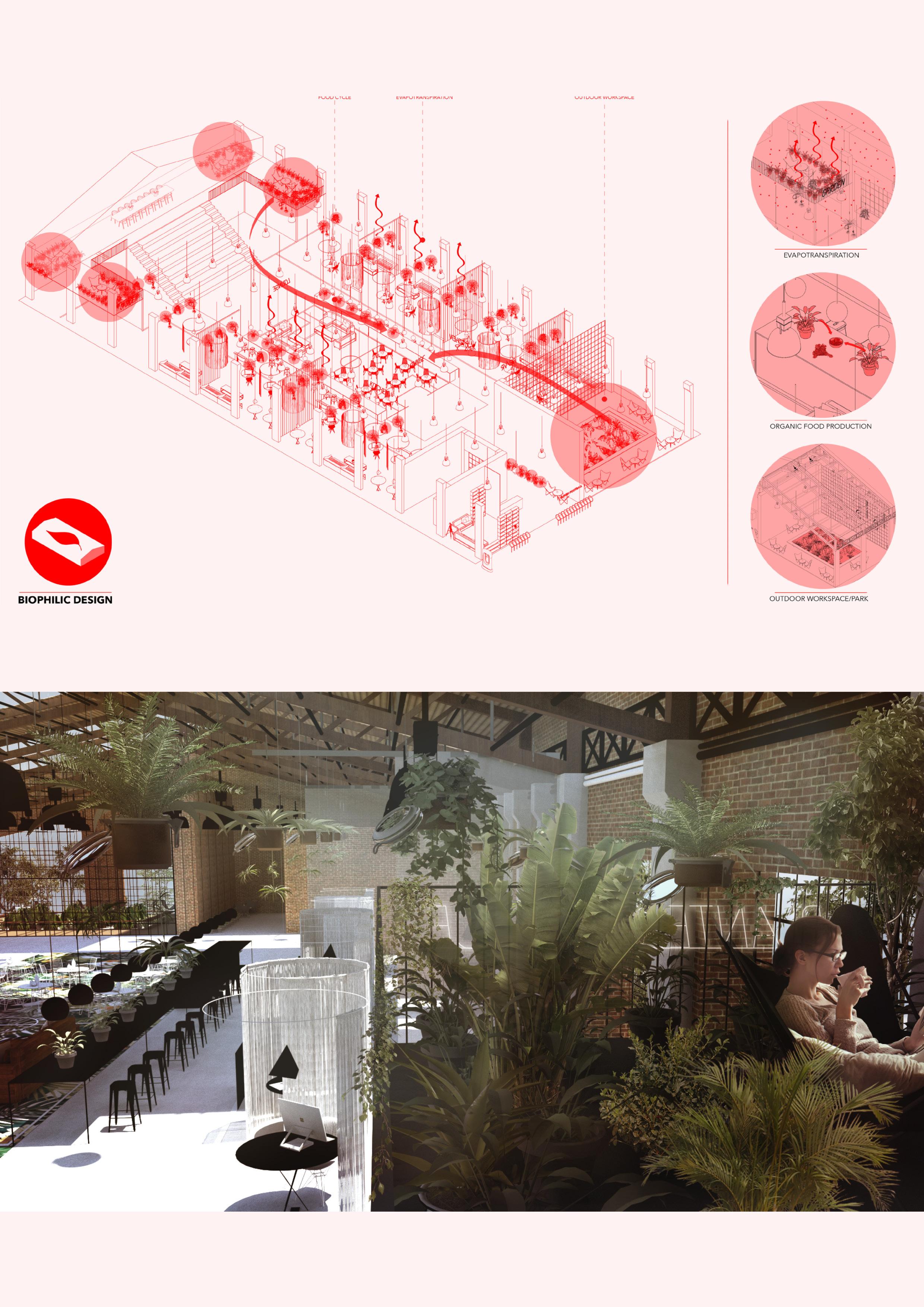 Atelier Aitken Modern Workplace design - Biophilic Design.jpg