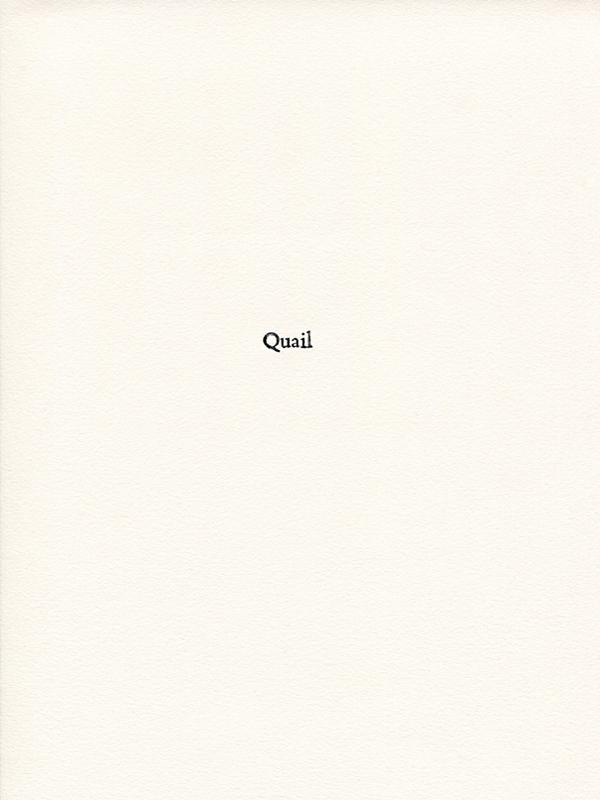 quail1.jpg