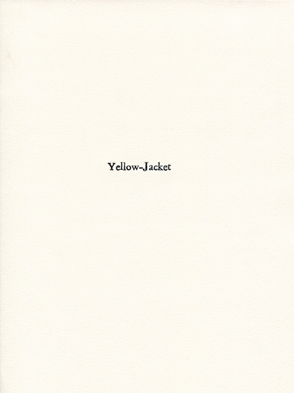 yellowjacket1.jpg