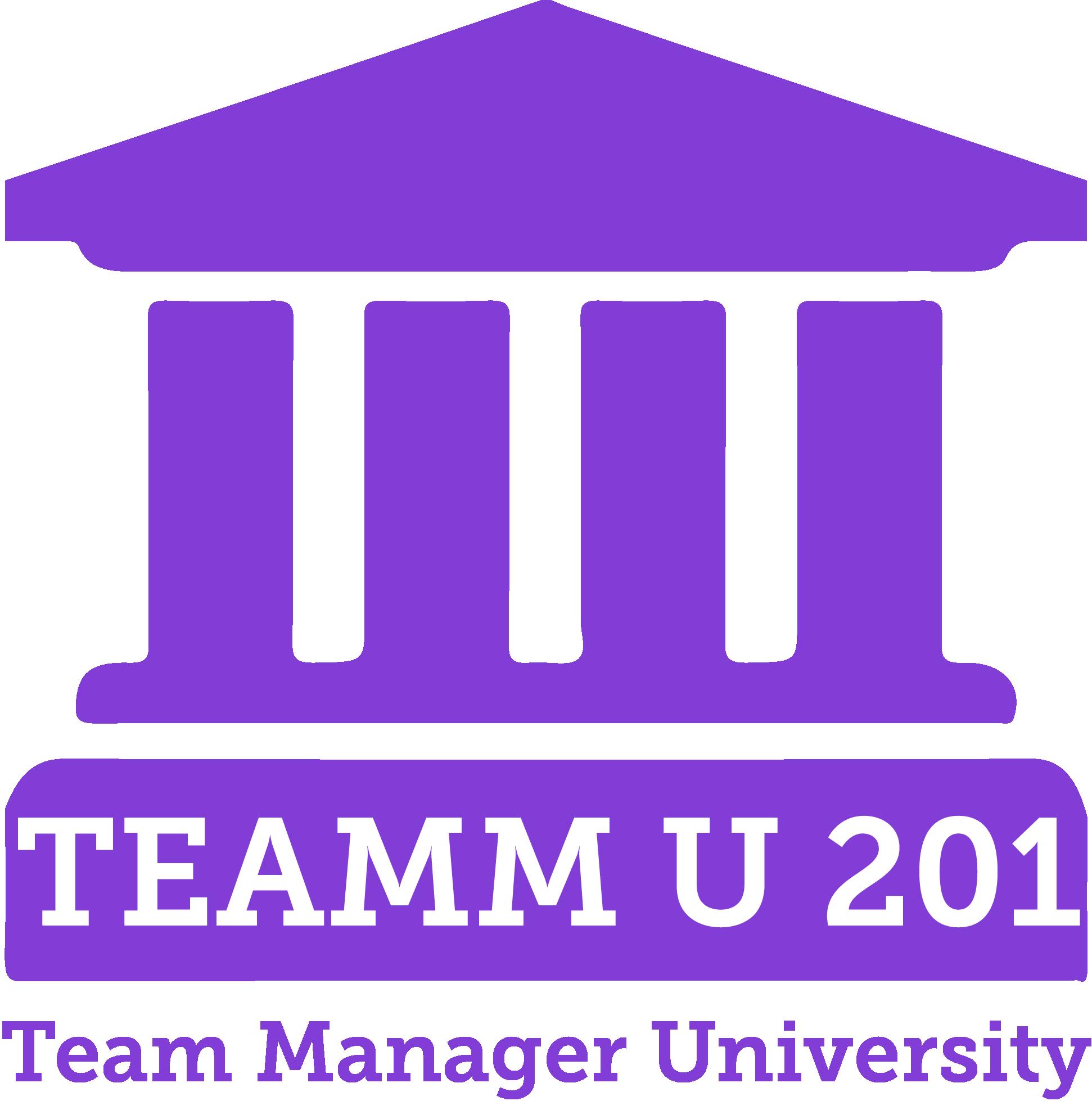 TEAMMU 201 Logo.png