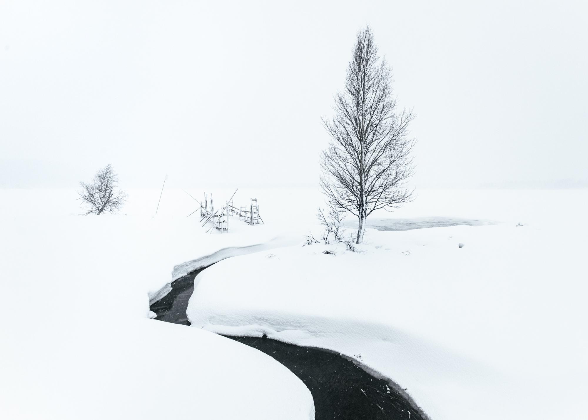 Konsta Linkola Finnish art