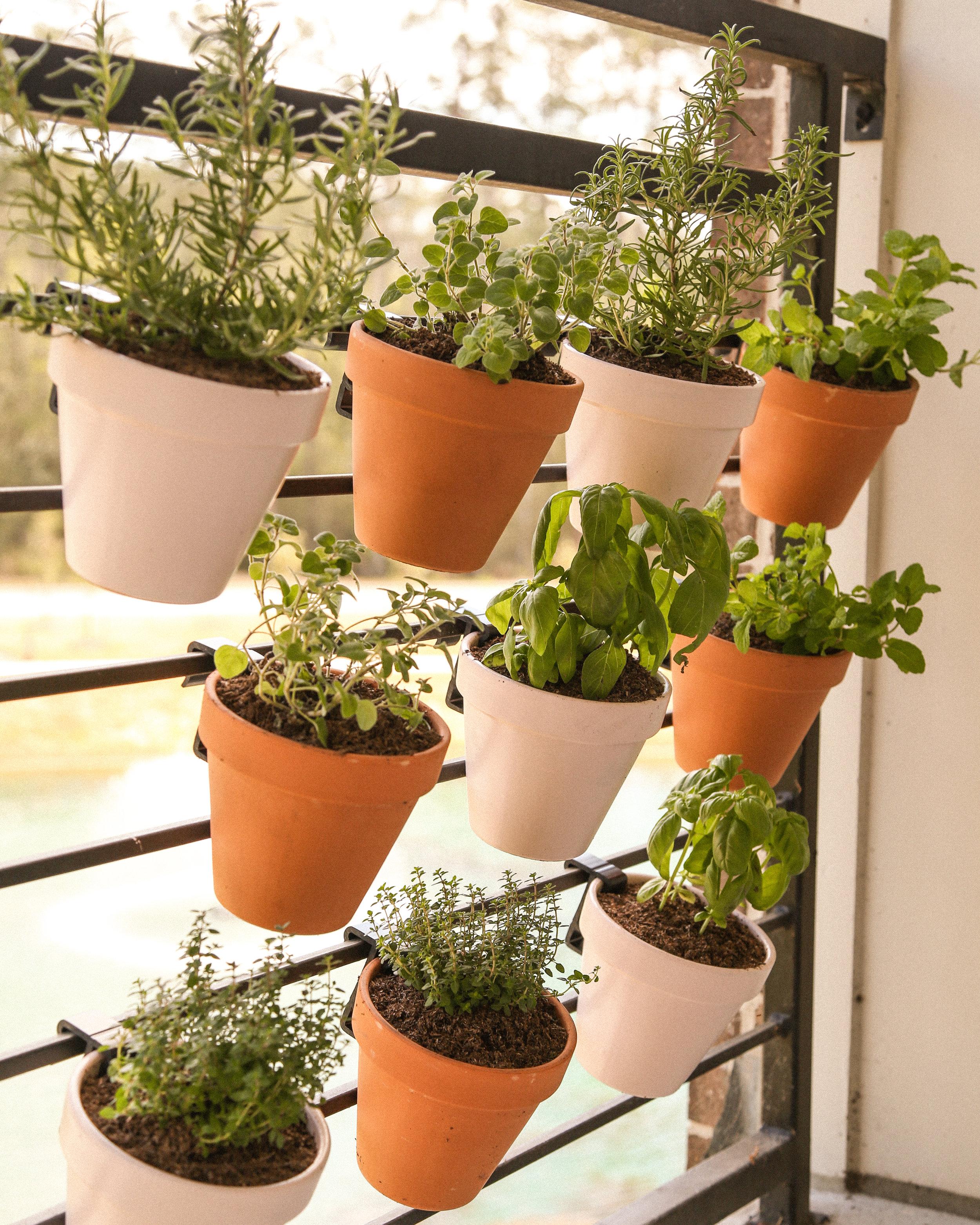 DIY Floating Blush Planters