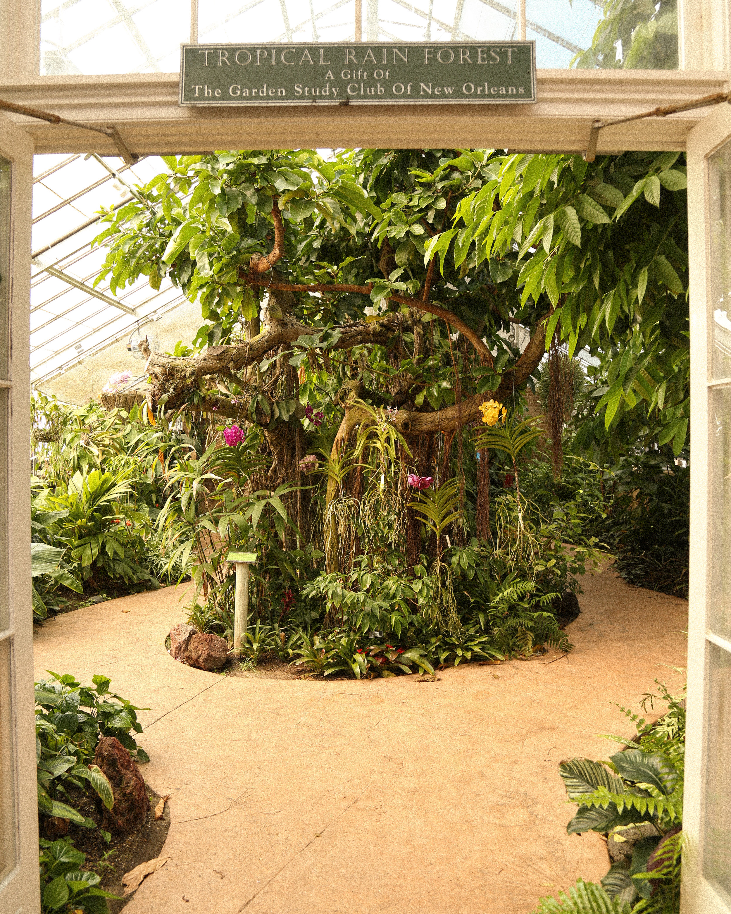 The Tropical Rain Forest conservatory has orchids and other tropical plants AND an indoor waterfall. Great for kids or two grown adults that love a water feature.