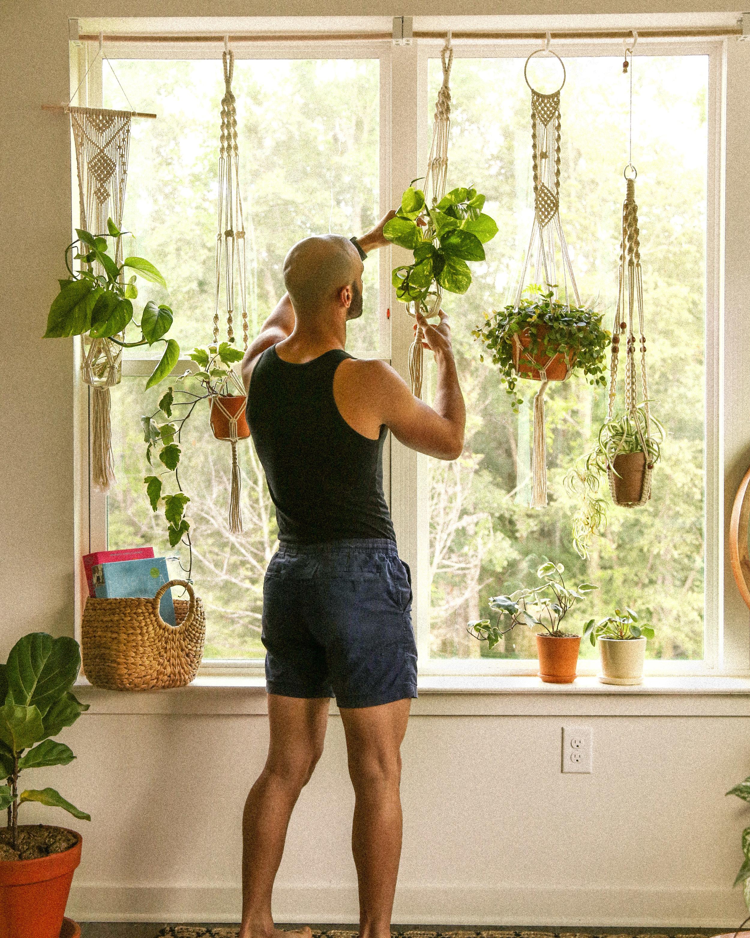 Adjustable plant window