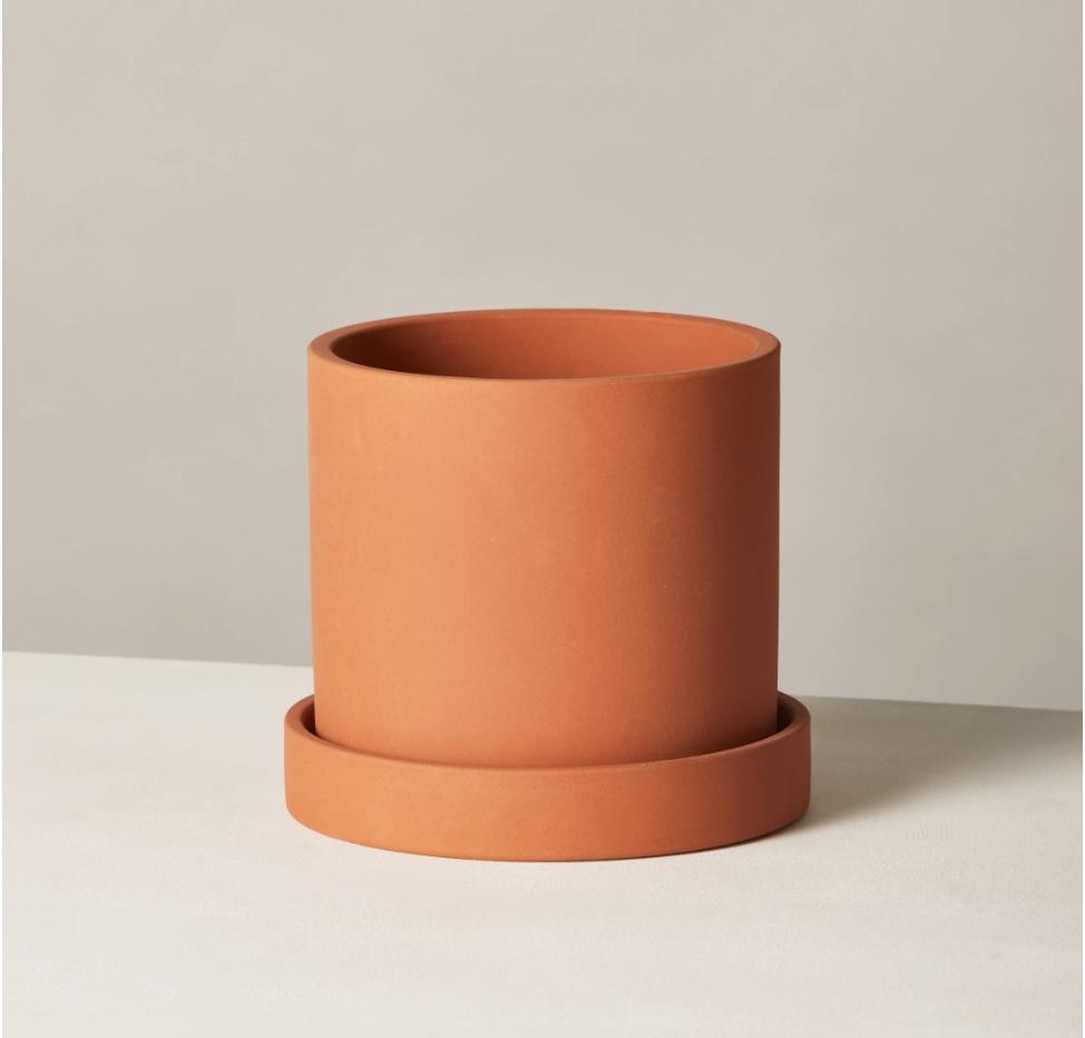 Terracotta Hyde Pot ($40+)