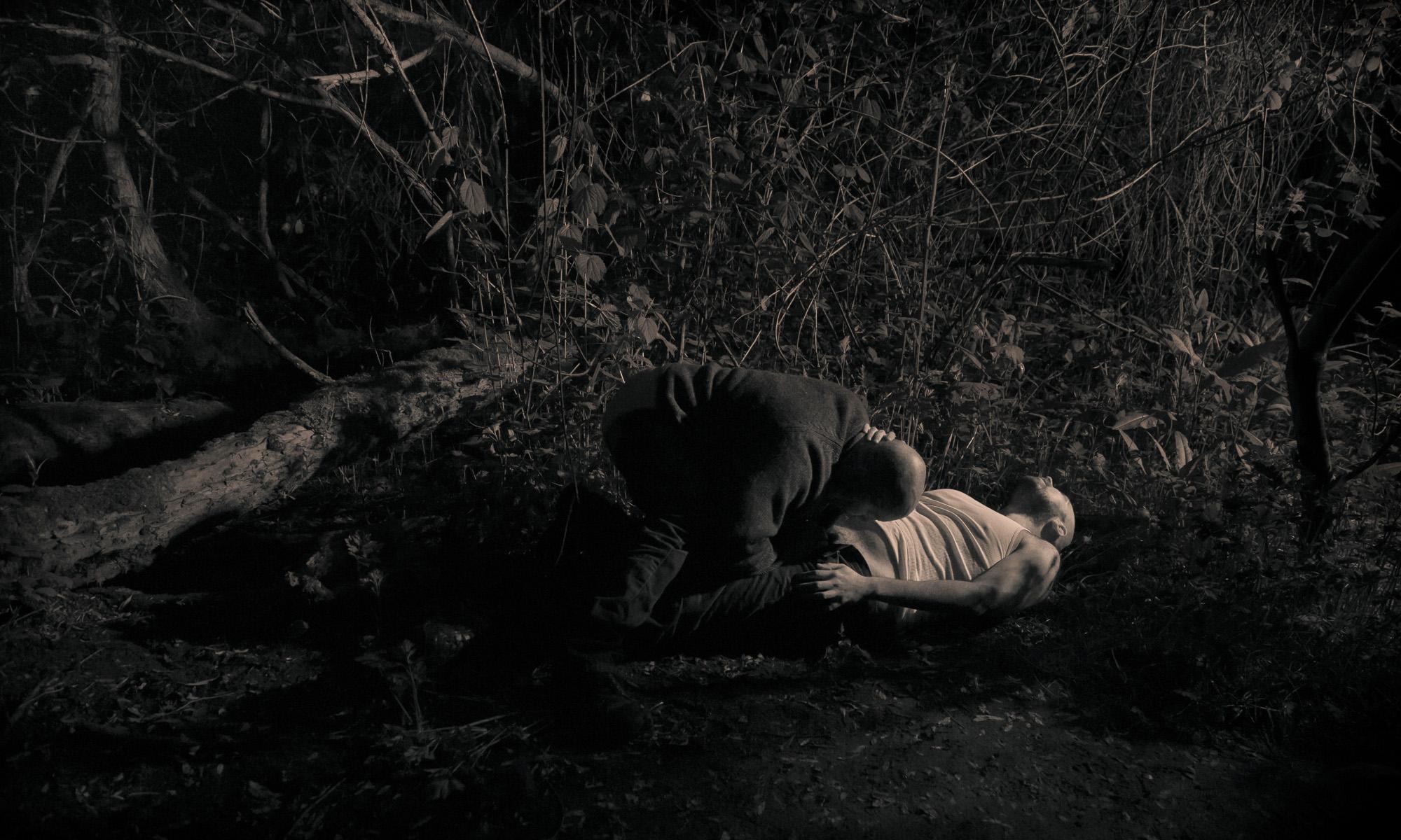 dreams nursed in darkness , 2013