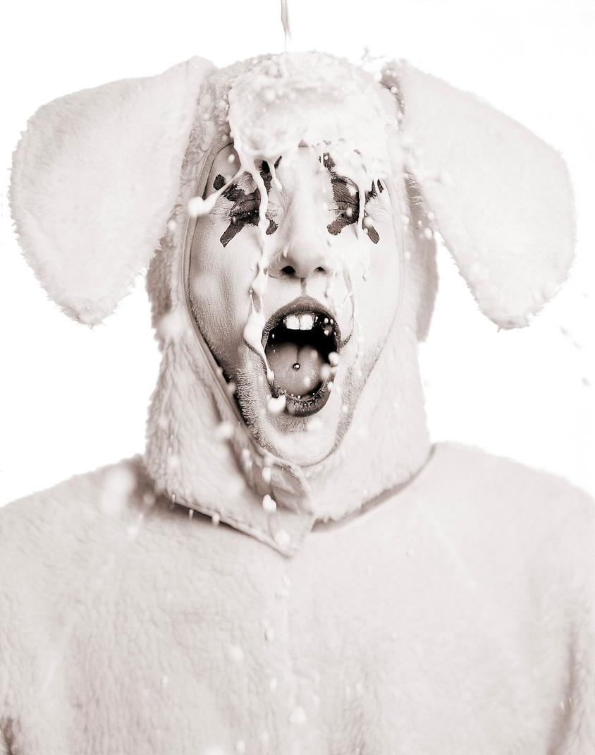 dirty bunny , 2004