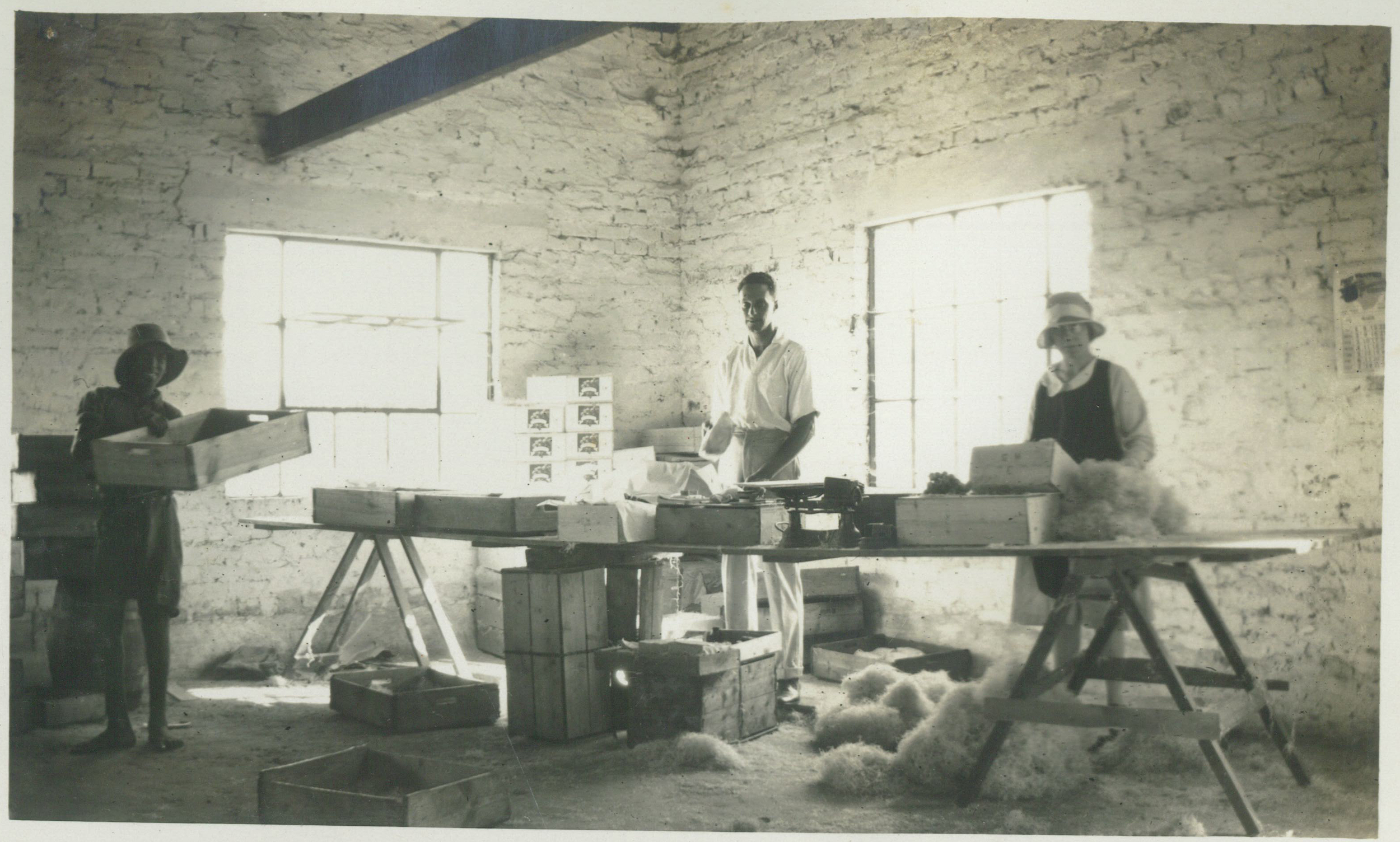 Jan 1931 - Interior of Packing Shed.jpg