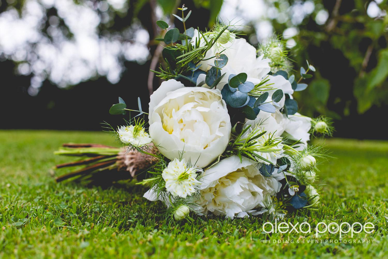 LP_wedding_cornwall_devon-4.jpg