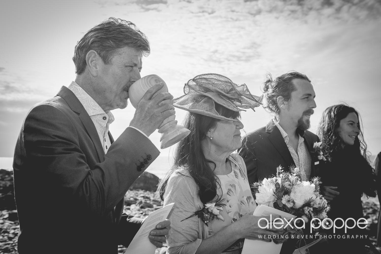 LP_wedding_cornwall_devon-23.jpg
