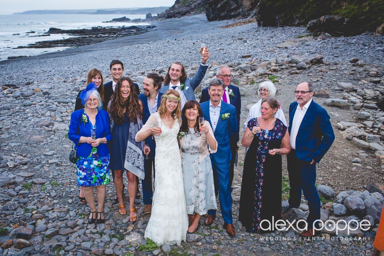 LP_wedding_cornwall_devon-66.jpg