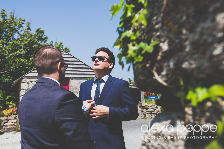 SD_wedding_knightor_cornwall-7.jpg