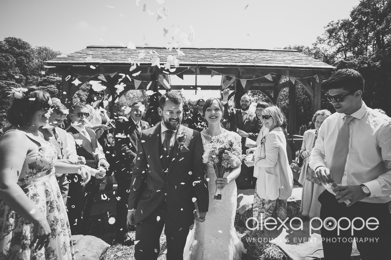 SD_wedding_knightor_cornwall-36.jpg