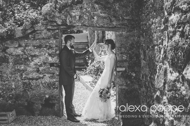 SD_wedding_knightor_cornwall-50.jpg