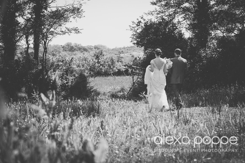 SD_wedding_knightor_cornwall-54.jpg