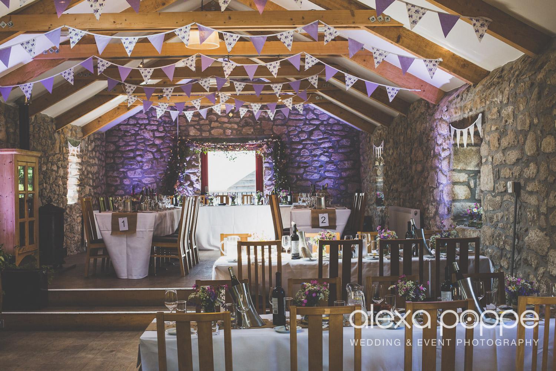 SD_wedding_knightor_cornwall-61.jpg