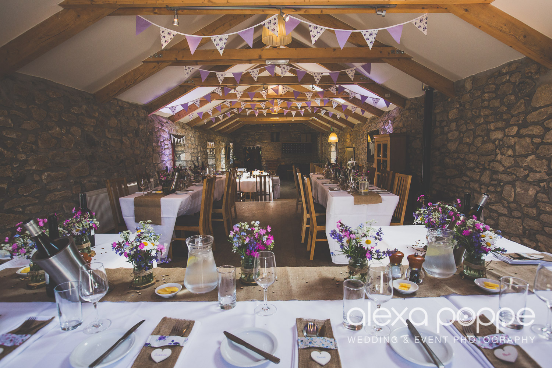 SD_wedding_knightor_cornwall-62.jpg