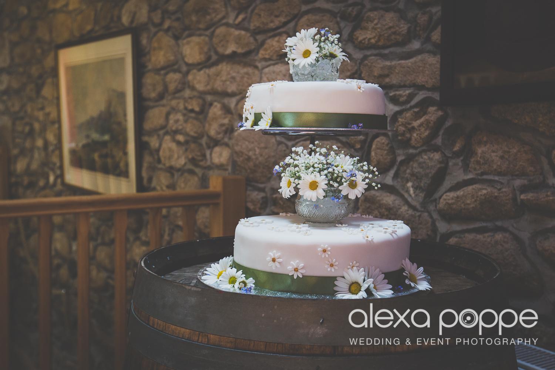 SD_wedding_knightor_cornwall-68.jpg