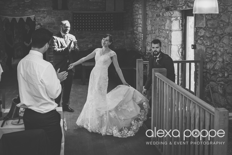 SD_wedding_knightor_cornwall-70.jpg
