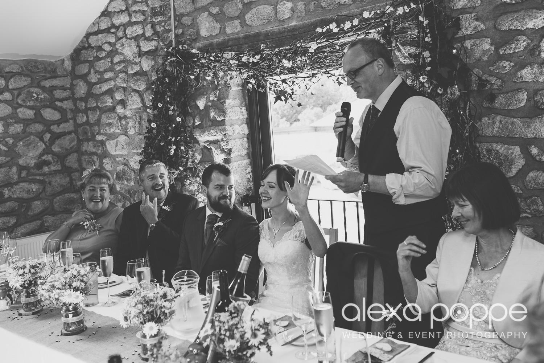 SD_wedding_knightor_cornwall-72.jpg