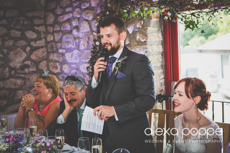SD_wedding_knightor_cornwall-81.jpg