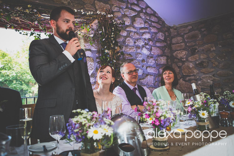 SD_wedding_knightor_cornwall-82.jpg