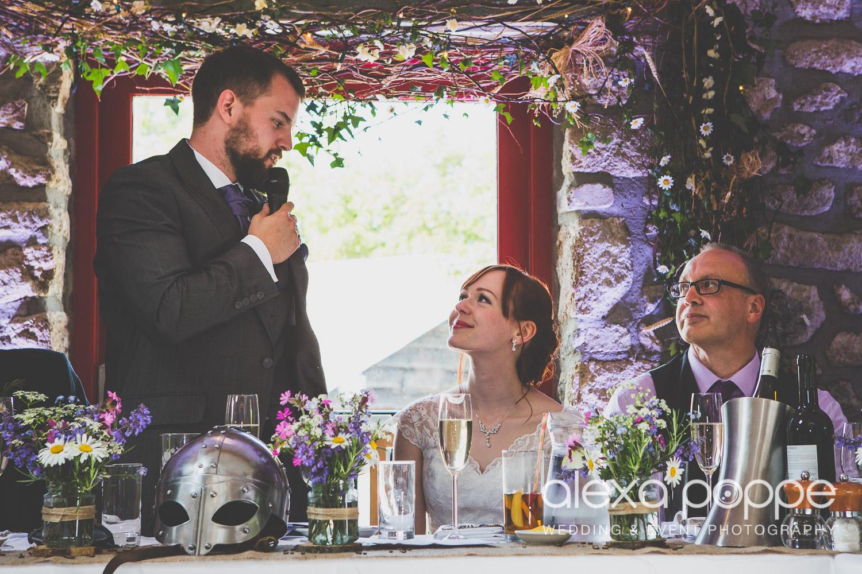 SD_wedding_knightor_cornwall-84.jpg