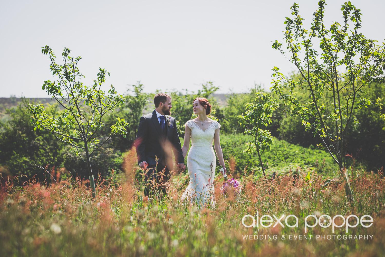 SD_wedding_knightor_cornwall-56.jpg